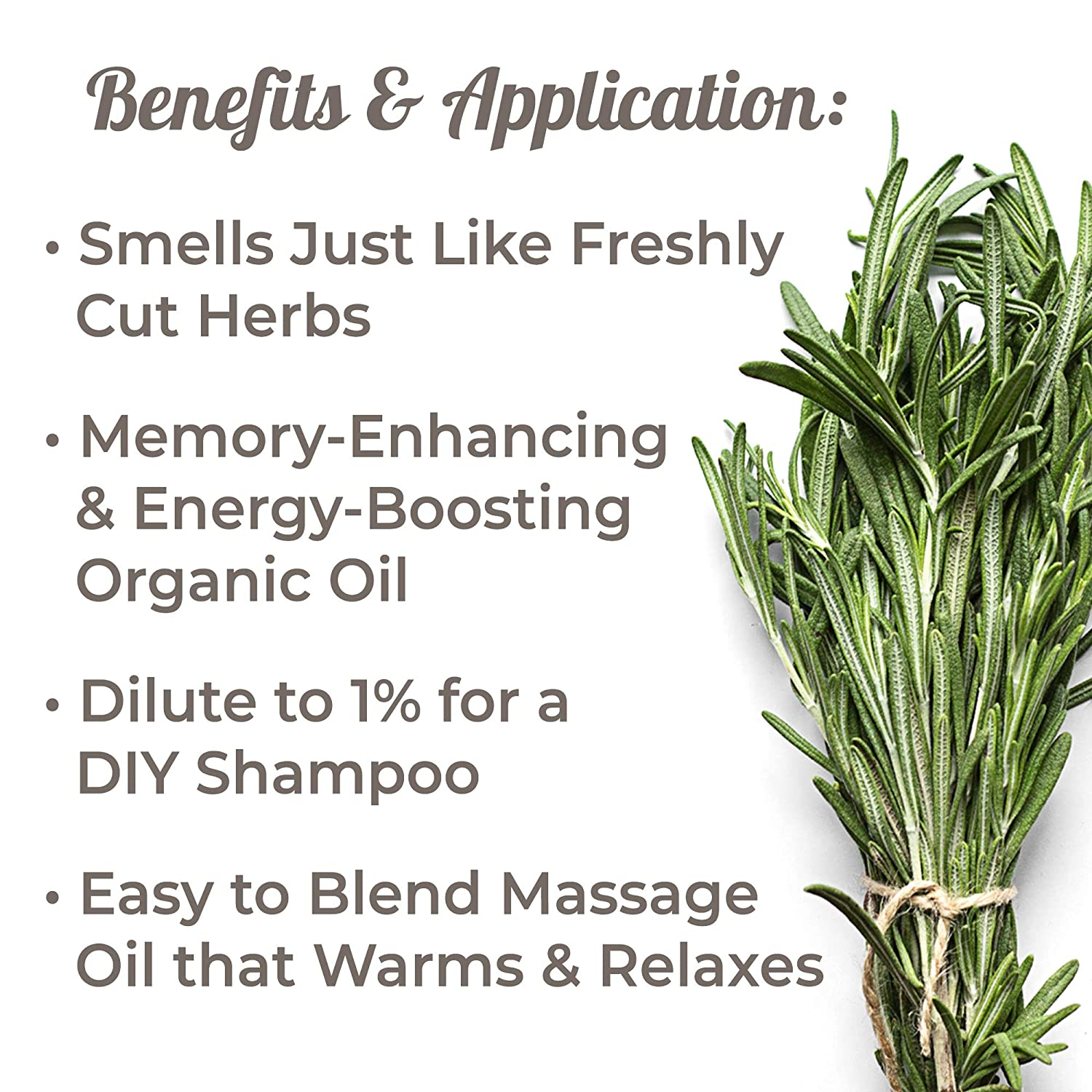 Plant Therapy Rosemary Organic Essential Oil | 100% Pure, USDA Certified  Organic, Undiluted, Natural