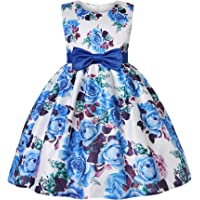 WZSYGDTC 2-9 Years Girls Floral Print Pageant Dresses Toddler Formal Party Dress