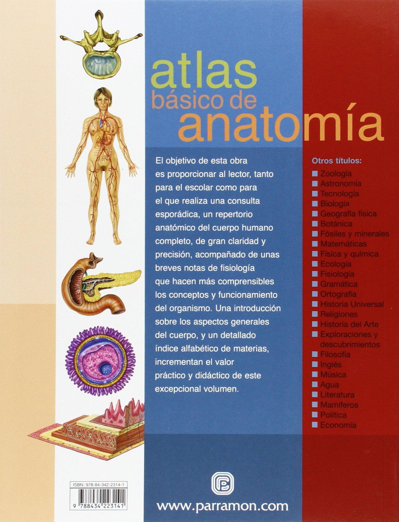 Atlas Básico De Anatomía (Atlas básicos): Amazon.es: Adolfo Cassan ...