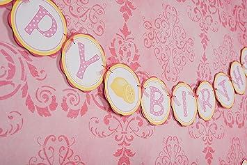 pink lemonade happy birthday banner birthday girl decorations