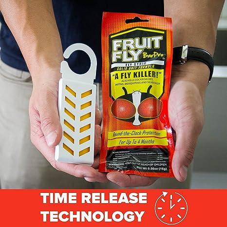 Amazon Com Fruit Fly Barpro 4 Month Protection Against Flies