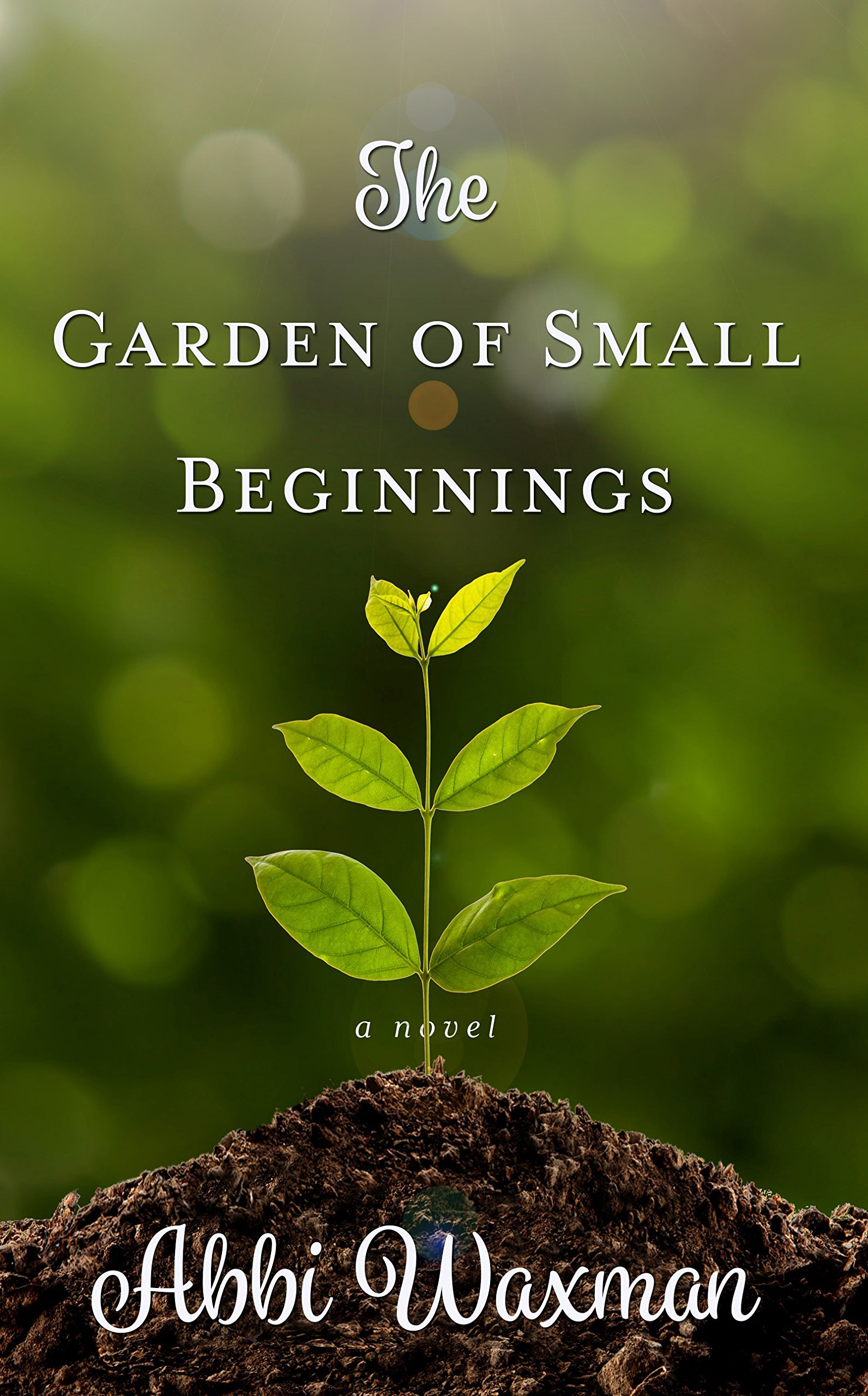 The Garden of Small Beginnings (Thorndike Press Large Print Women's Fiction) PDF