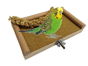 Chinchilla Perches Platform Budgie Platform Stand Strong Wood Wood Color Gerbils Hamsters