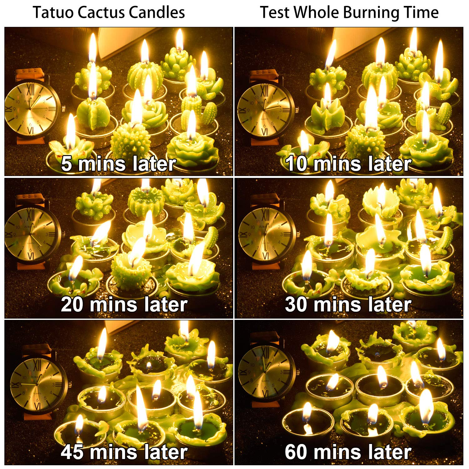 Tatuo 12 Pieces Cactus Candles Succulent Cactus Rose Tealight Handmade Candles for Teatime Spa Home Party Wedding Decoration Gifts by Tatuo (Image #7)