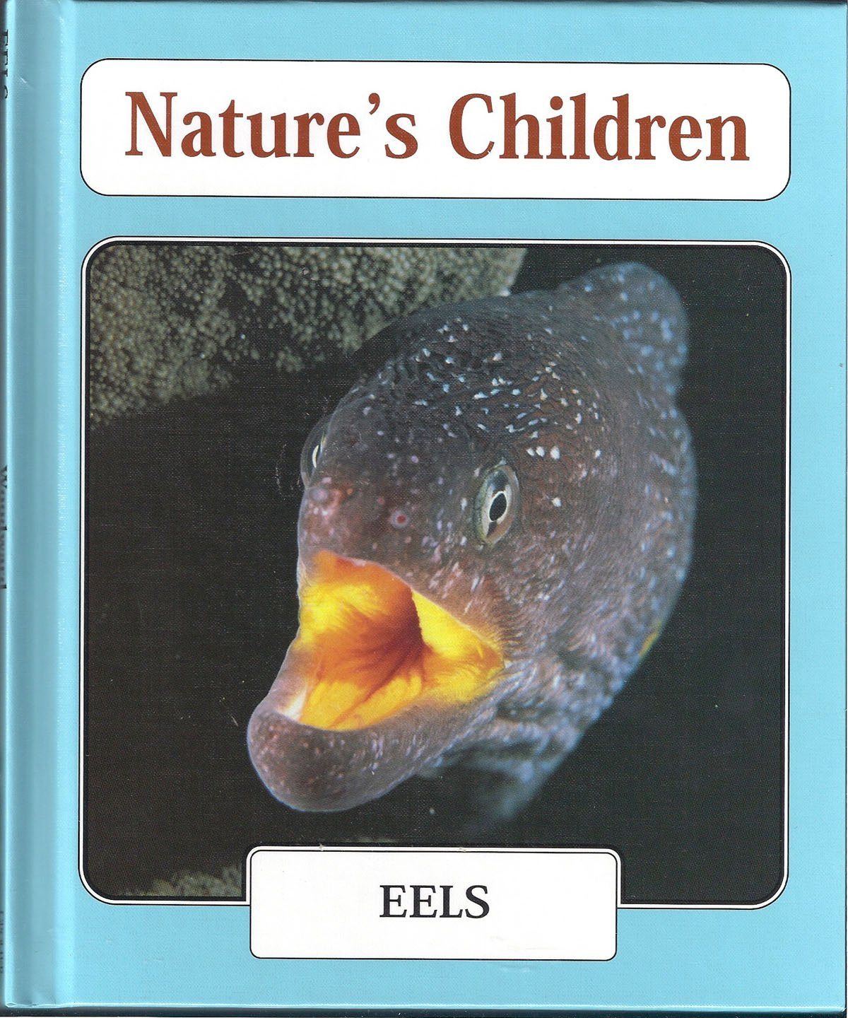 Eels (Nature's Children) pdf epub