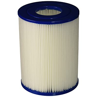 Pleatco PRB25SF-PAIR Replacement Cartridge for Dynamic Series IV, Model DSF, DFML-25C, Waterway Models, 2 Count : Swimming Pool Cartridge Filters : Garden & Outdoor