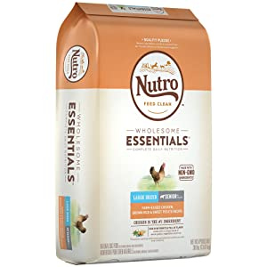 Nutro Wholesome Essentials Senior Large Breed Dry Dog