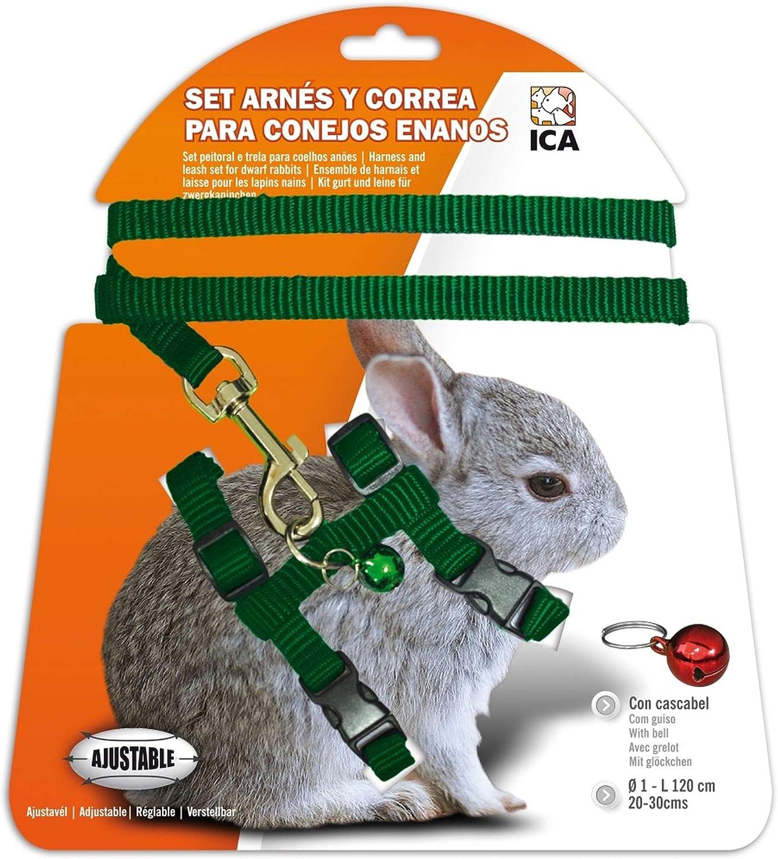 ICA DA1021 Set de Arnés y Correa para Conejos Enanos, Verde ...