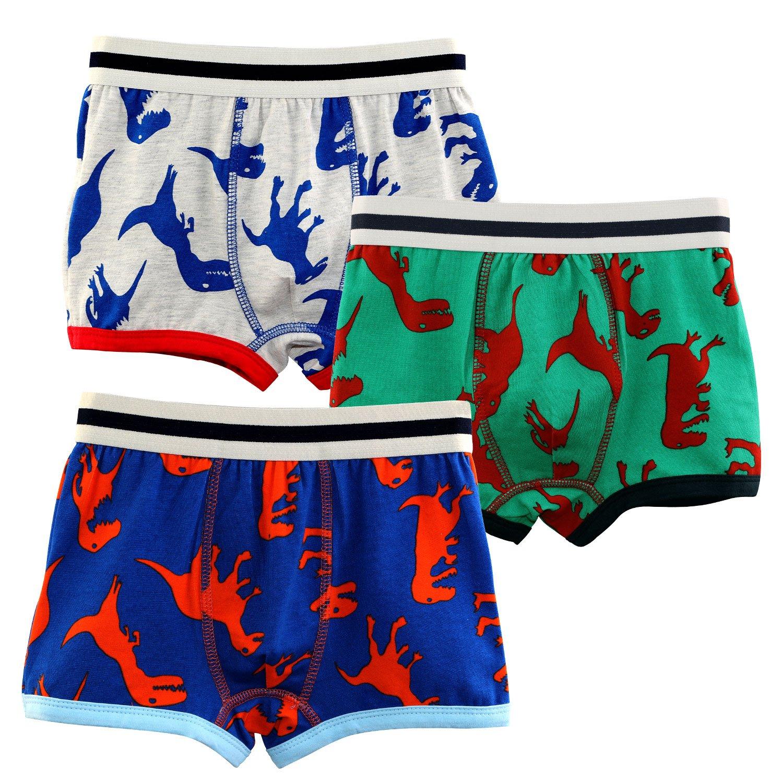 Auranso Baby Toddle Kids Boys Boxer Briefs 3 Pack Underwear Dinosaur Set (2-7T)