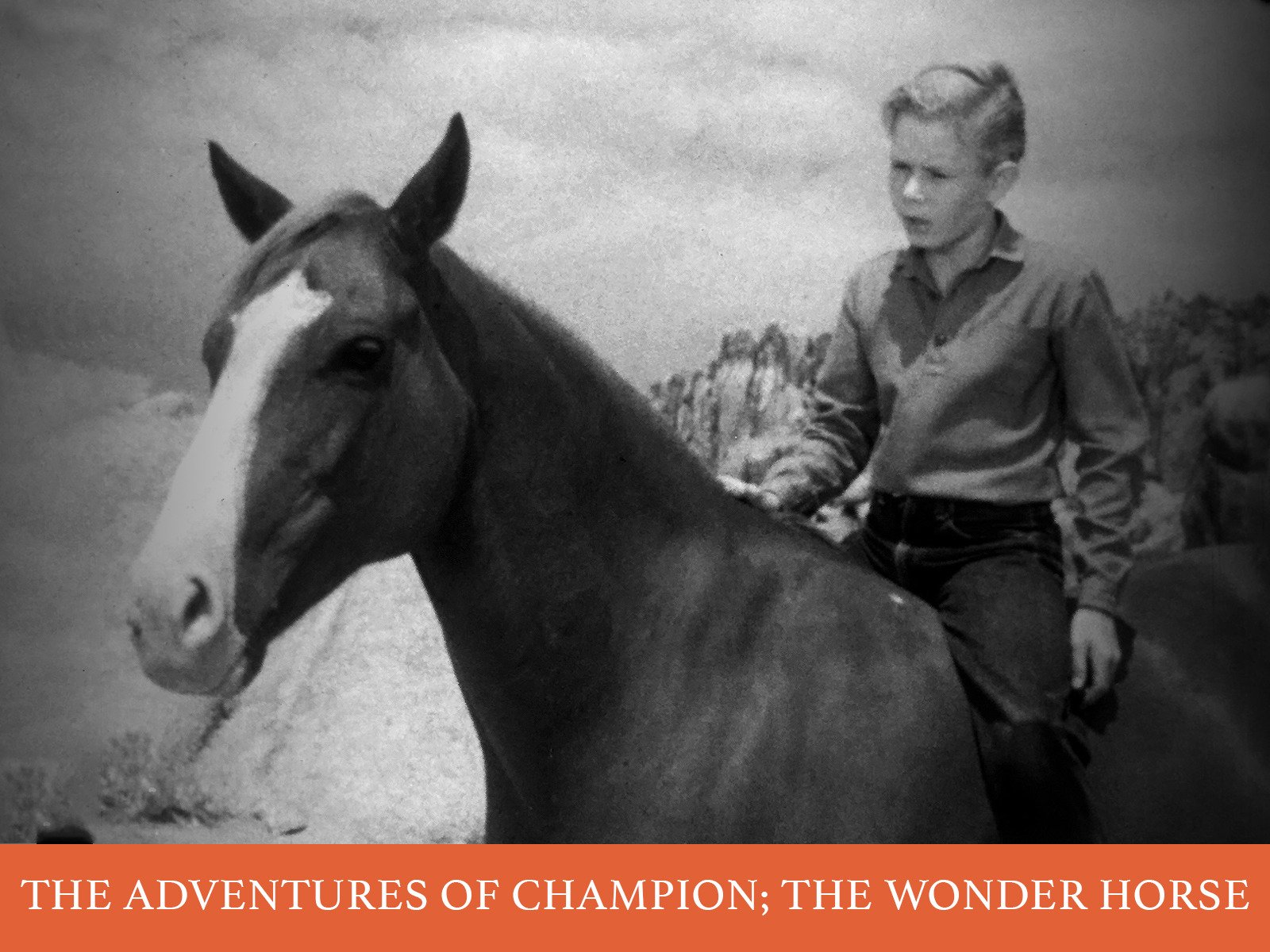Watch The Adventures of Champion, The Wonder Horse | Prime Video