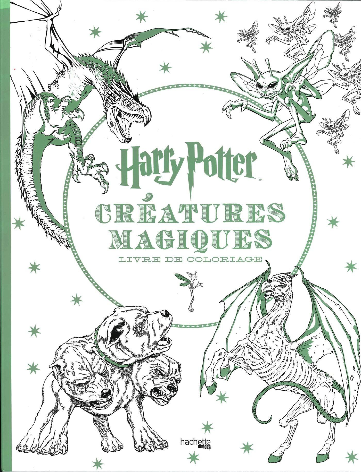 Harry Potter Creatures Magiques Livre De Coloriage Coloring Book Heroes French Edition Collectif Hachette 9782011459213 Amazon Com Books