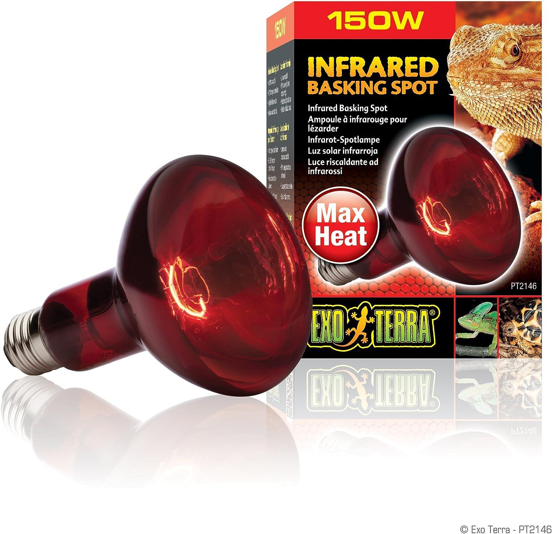 Exo terra Éclairage pour Reptiles Lampe Intense Baskingspot 150 W Exoterra PT2140