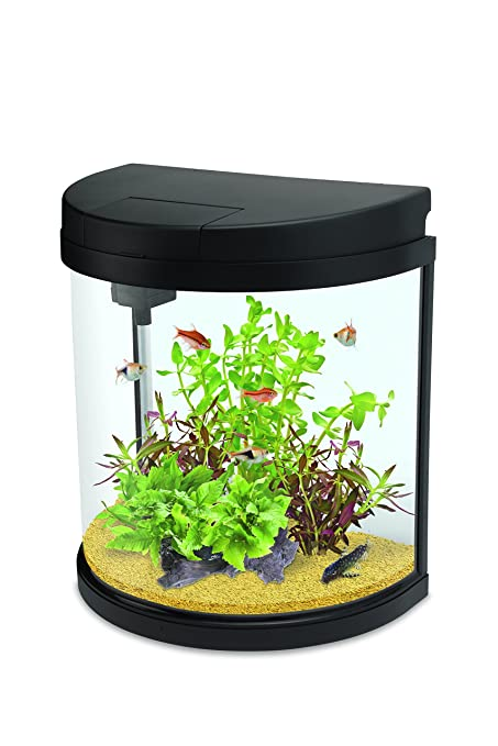Interpet LED Fishbox media luna Acuario Fish Tank – 19 L