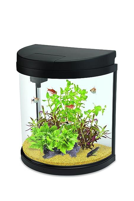 Interpet LED Fishbox media luna Acuario Fish Tank – 19 L