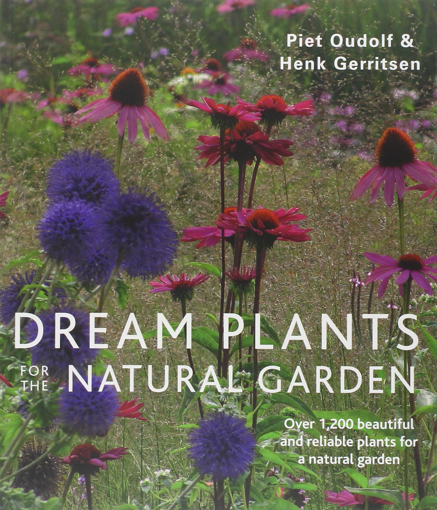 Beautiful natural gardens - Dream Plants For The Natural Garden Piet Oudolf Henk Gerritsen 9780711234628 Amazon Com Books