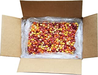 product image for Surf Sweets Organic Jelly Beans, 10 Pound Bulk