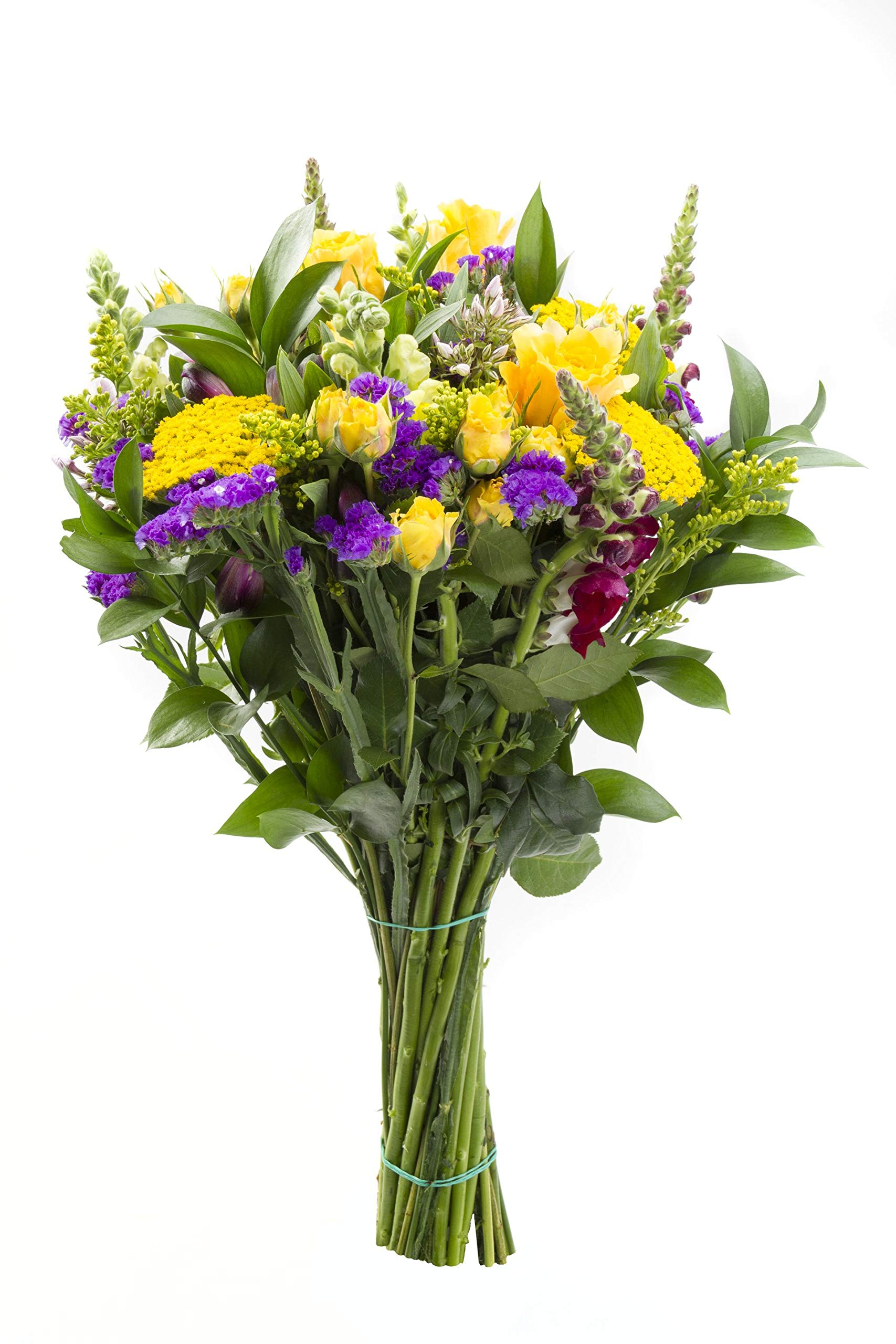 Chichi Party Purple and Yellow Flowers with Roses, Snapdragons, and More Sustainably Grown and Harvested, No Vase Included by BloomsyBox (Image #5)