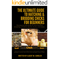 The Ultimate Guide to Hatching & Brooding Chicks for Beginners: The step by step guide to hatching and brooding…