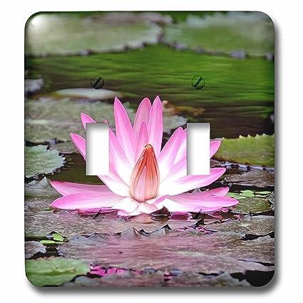 3drose lsp2402542 2 pink asia lotus flower buddha symbol double 3drose lsp2402542 2 pink asia lotus flower buddha symbol double toggle switch mightylinksfo