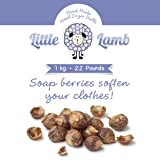 2.2lb Bag of 100% Natural Soap Nuts- Essential for