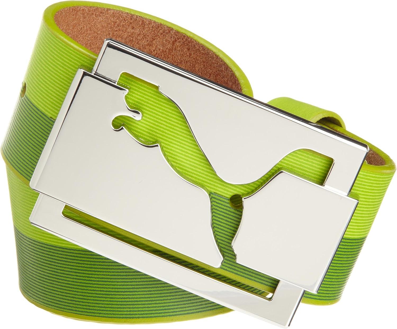 Moretón volatilidad condón  Amazon.com: Puma Golf Men's High Shine Belt (Lime Punch Graphic, 30 Small):  Clothing