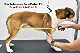 Romani Pet Vest Support System X-SM Support Sling