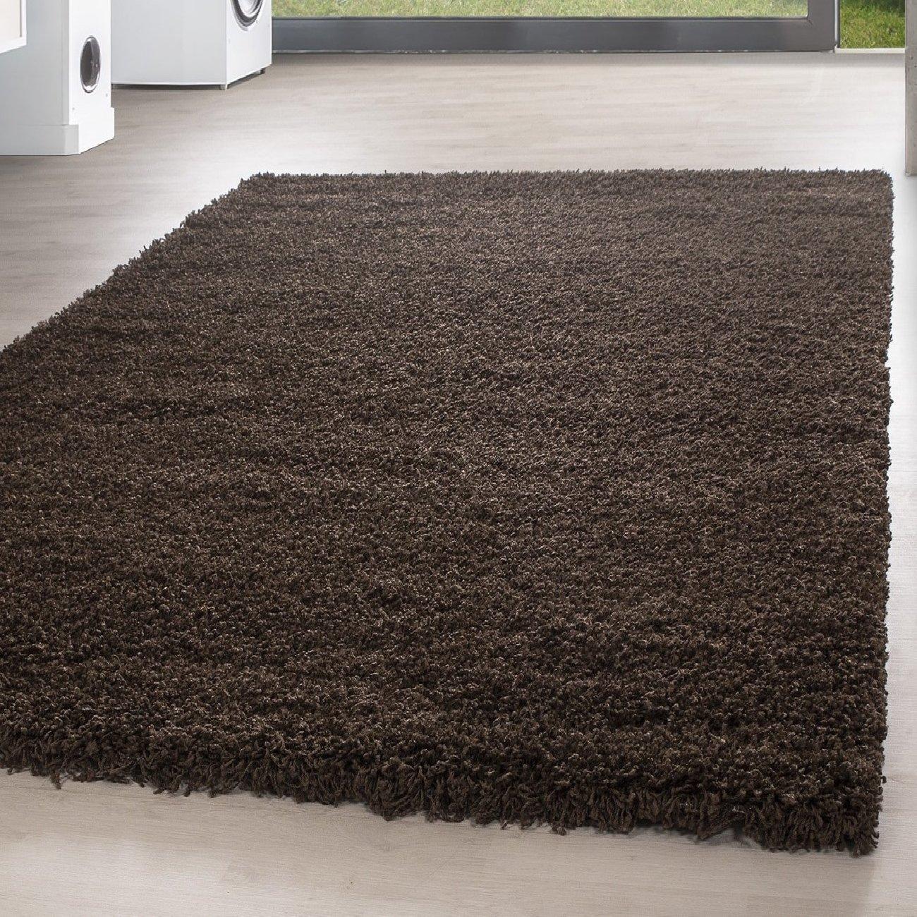 HomebyHome Shaggy Hochflor Langflor Einfarbig Günstig Teppich für Wohnzimmer Wohnzimmer Wohnzimmer mit Oeke Tex Zertifiziert 14 Farben und 17 Grössen, Größe 200x290 cm, Farbe Terra B01M25W8NU Teppiche 39f225