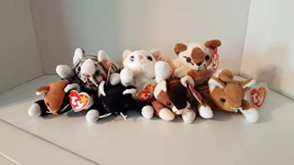 dc672ce5ec7 Amazon.com  Cat Beanie Baby Set of 7  Chip
