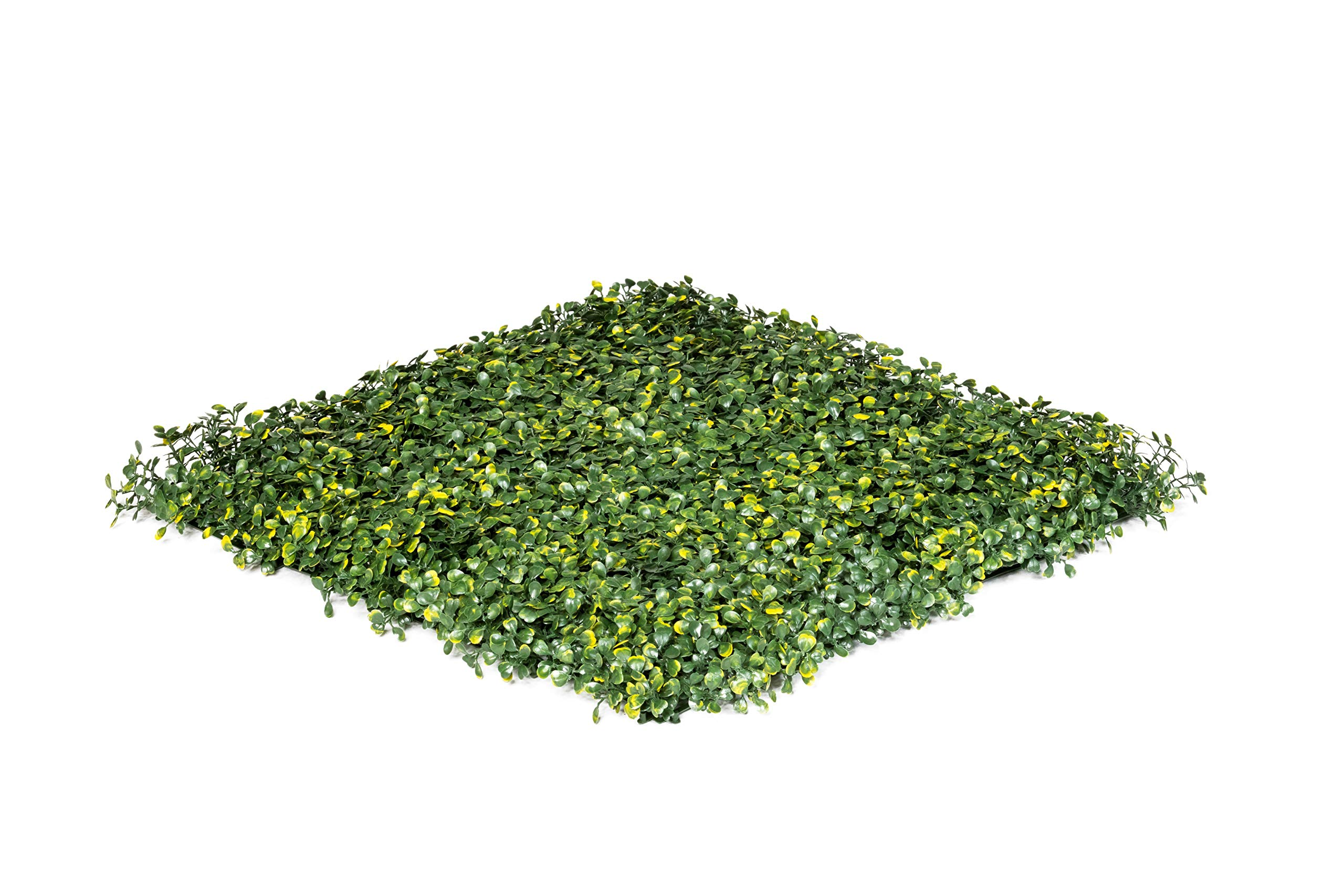 UltraHedge Artificial Boxwood Hedge | Decorative Wall Greenery Fence Covering | Indoor and Outdoor 20'' x 20'' Panel Small Leaves Light Green 6 Pack