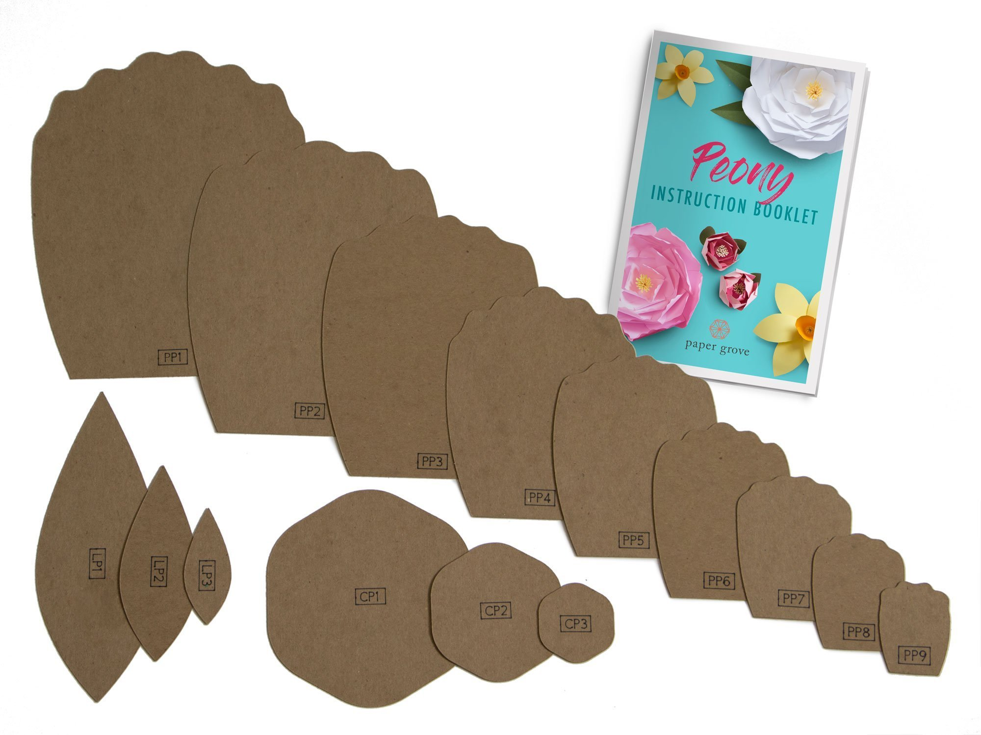 "Paper Flower Template Kit, 2""-18"" Peony, Leaf Templates and Instruction Book Included! DIY Wedding, Shower, Photography Backdrop (Peony)"