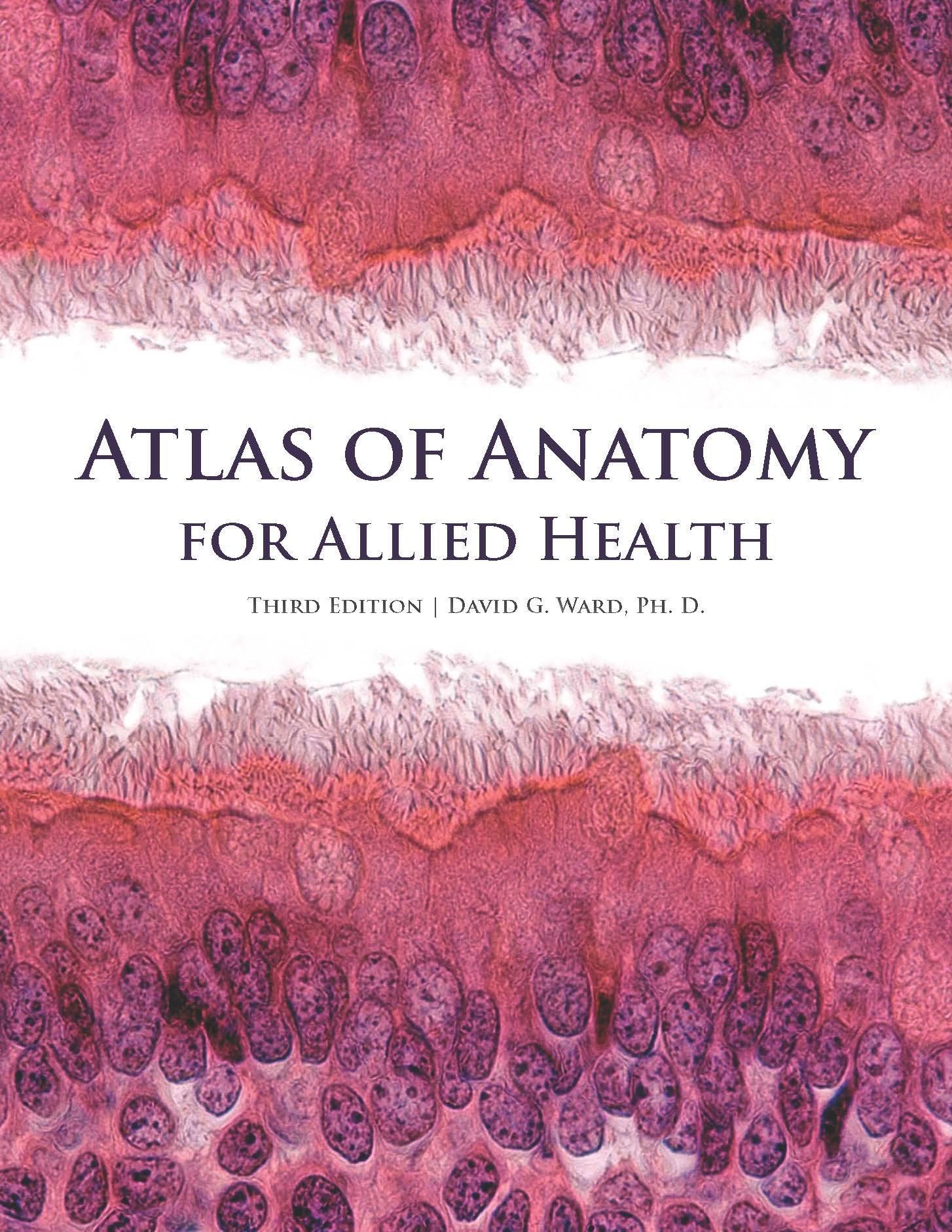 Atlas of Anatomy for Allied Health: David G. Ward: 9781599847184 ...