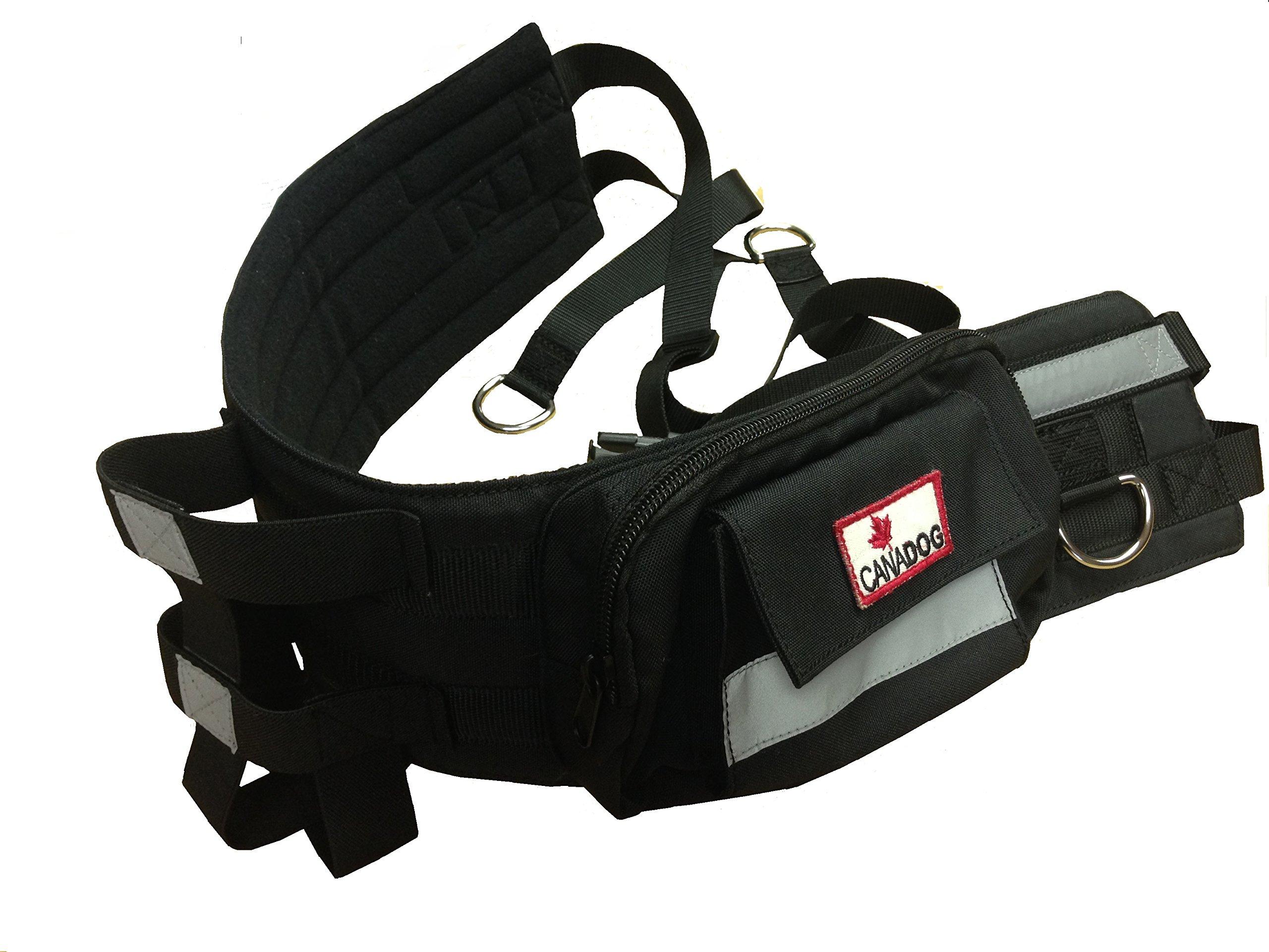 CanaDog Canicross/Hands-Free Walking Belt