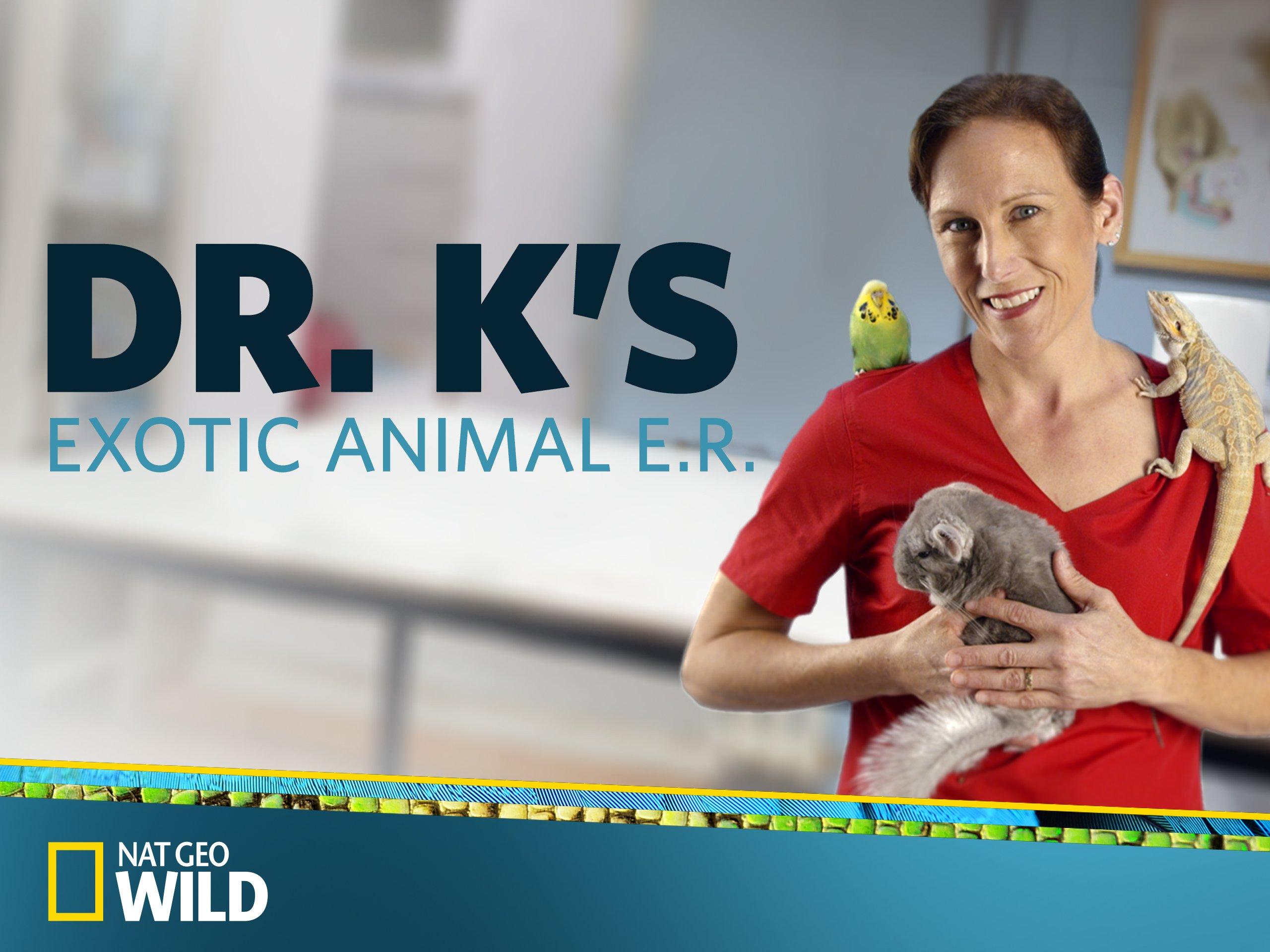 Watch Dr. K's Exotic Animal ER Season 1 | Prime Video