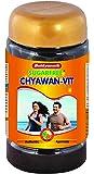 Baidyanath Sugarfree Chyawan Vit - 1 kg