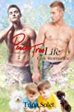 Peach Tree Life: Gay Romance
