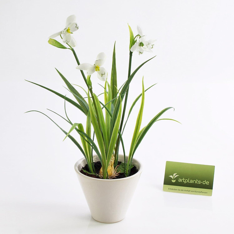 artplants - Campanilla con cebolla, en maceta, blanco, 30cm - Flor sintética / Planta decorativa: Amazon.es: Hogar