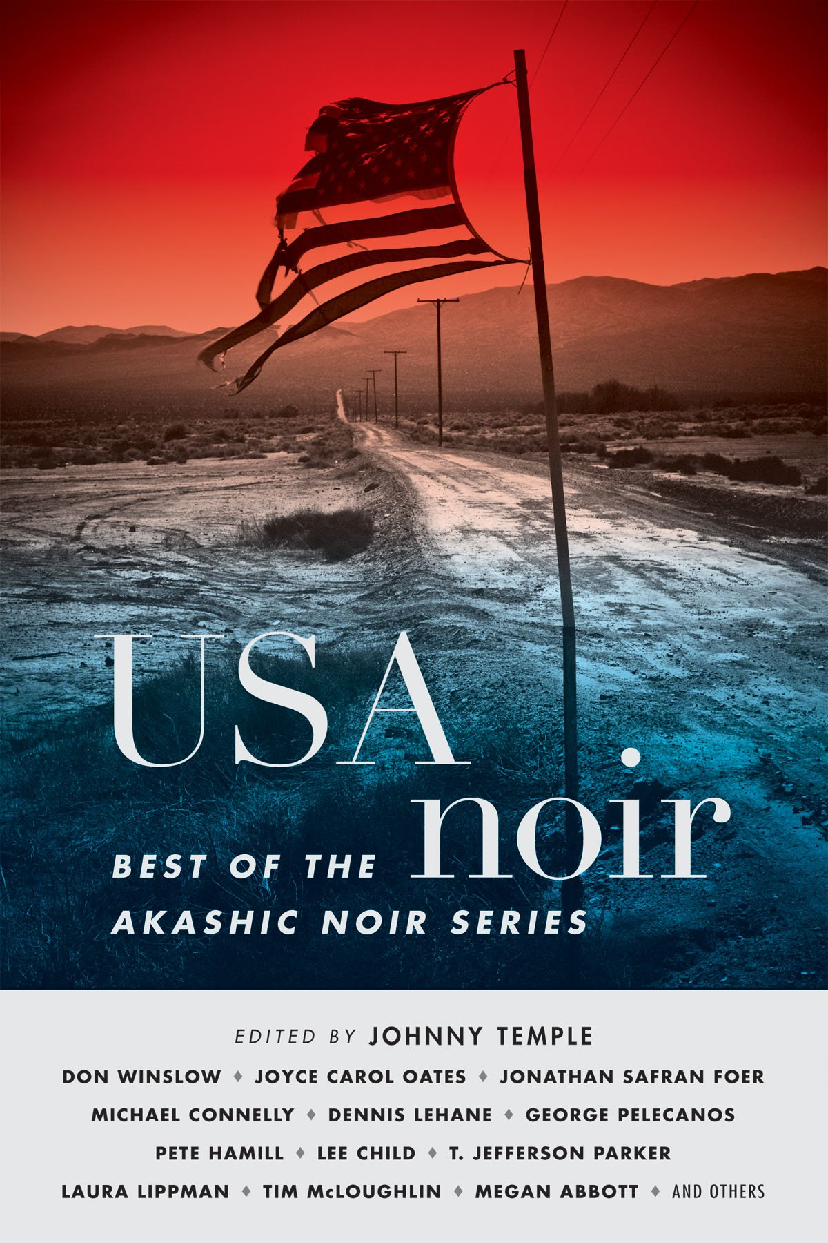 USA Noir: Best of the Akashic Noir Series: Johnny Temple