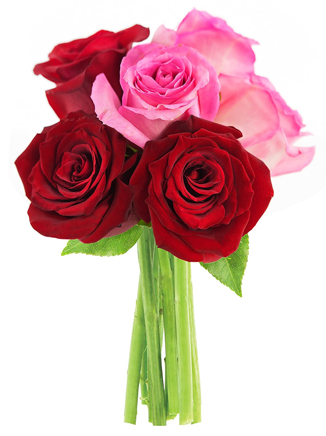 Amazon.com : Bouquet of Long Stemmed Red and Pink Roses (Half Dozen ...