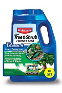 BIOADVANCED 701910A Tree and Shrub Protect and Feed