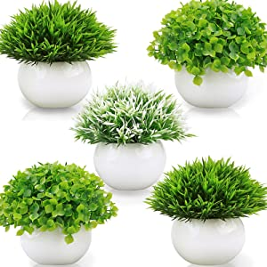 Summer Flower 5 Pack Small Artificial Plants in Ceramics Pots for Bathroom Home Decor Indoor, 2 Fake Mini Plant Green Boxwood Potted,3 Grass Faux Plant in White Pot for Bookshelf Farmhouse Decorations