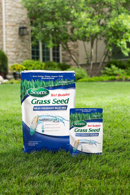 Scotts Turf Builder Grass Seed Image 2