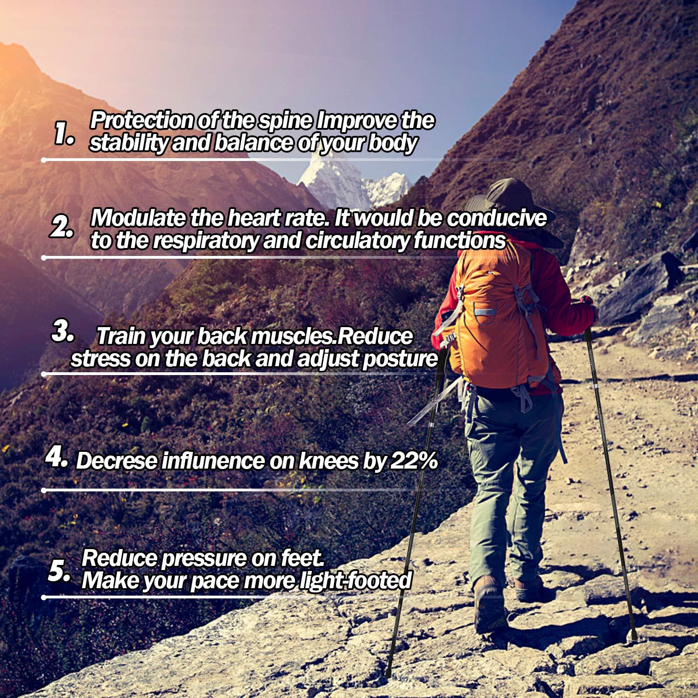2 Poles NGOZI Trekking Poles Walking Sticks Collapsible Lightweight Aluminum Snow Shoes Poles for Hiking//Camping//Mountainin//Backpacking 1 Set