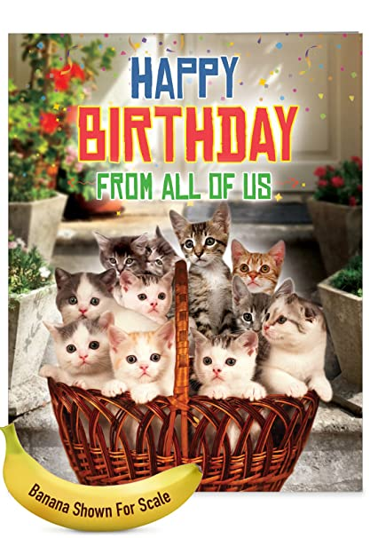 Jumbo Humorous Birthday Greeting Card From All Us Cats With Envelope Giant Size