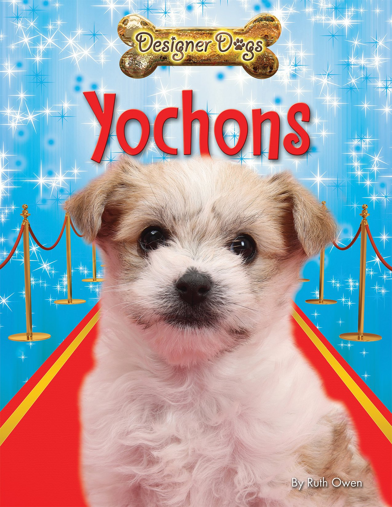 Read Online Yochons (Designer Dogs) Text fb2 ebook