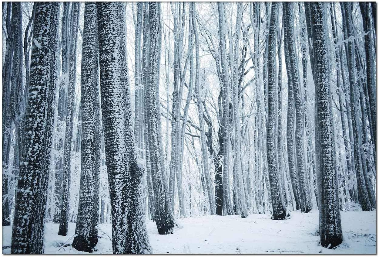 Wall Art Canvas Painting - Winter Forest Trees White Snow Modern Artwork for Living Room Wall Decor and Home D¡§?cor Framed Ready to Hang DIY Your Photos 8