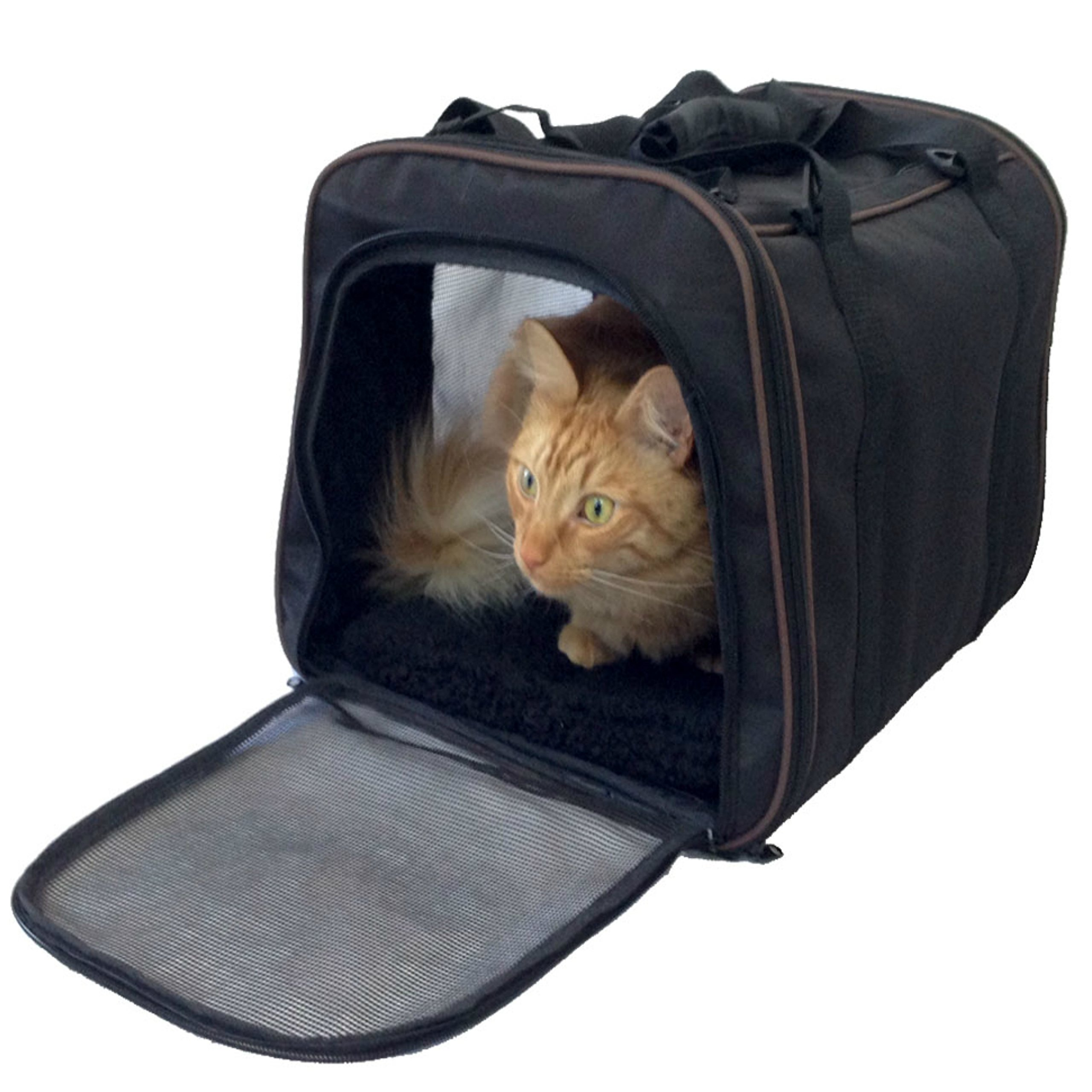 Pawfect Pet-Pet Carrier,Large Soft Sided Airline Approved For Travel,For Cat And Dog,Top Loading,Foldable For Storage,Black