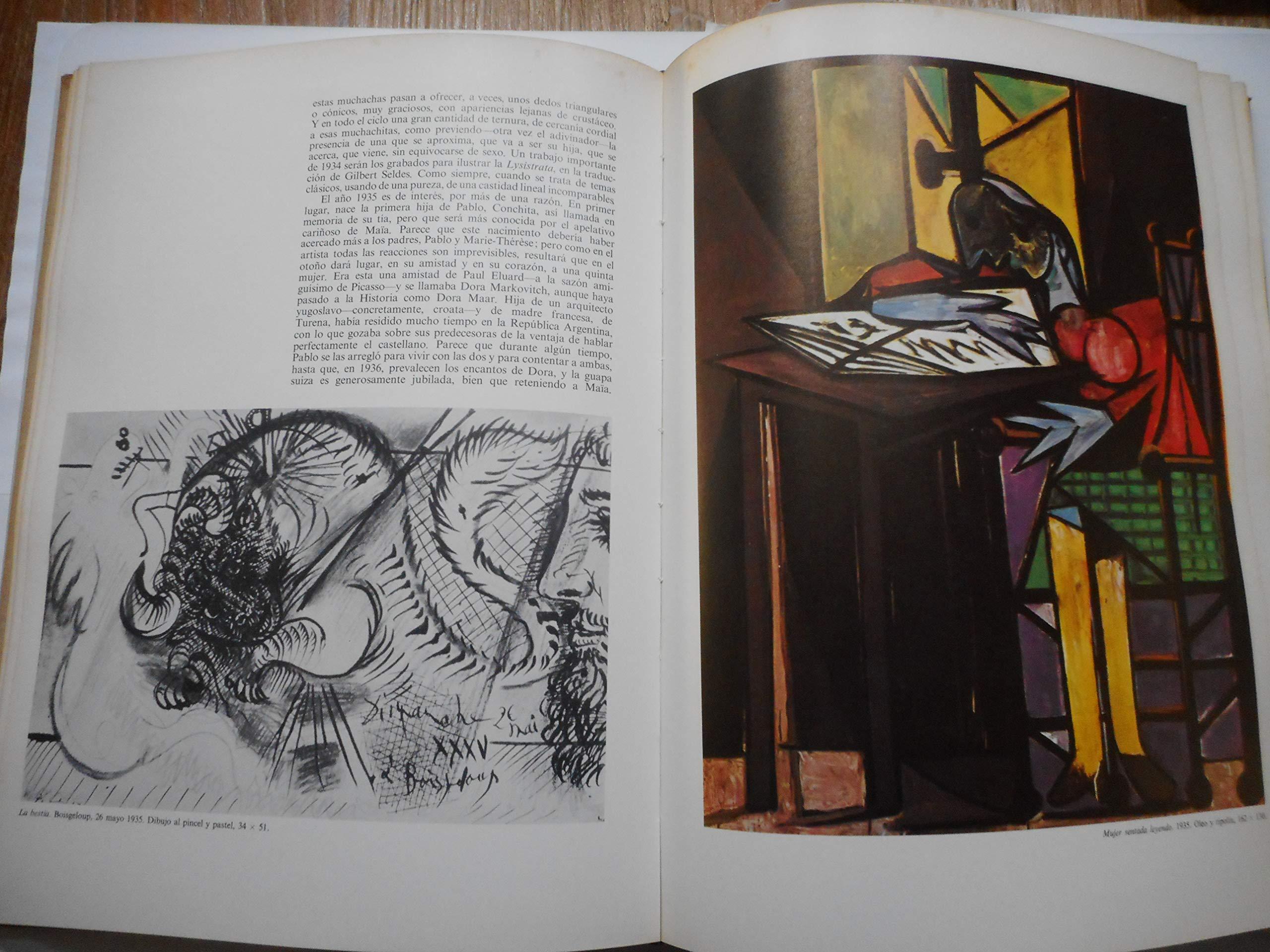 Amazon.com: Picasso Librofilm Collection Aguilar Fotos ...