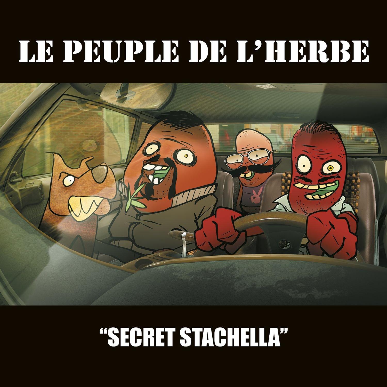 Secret Stachella                                                                                                                                                                                                                                                                                                                                                                                                <span class=