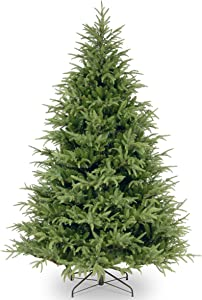 National Tree Frasier Grande Fir Tree, 7 ft, Green