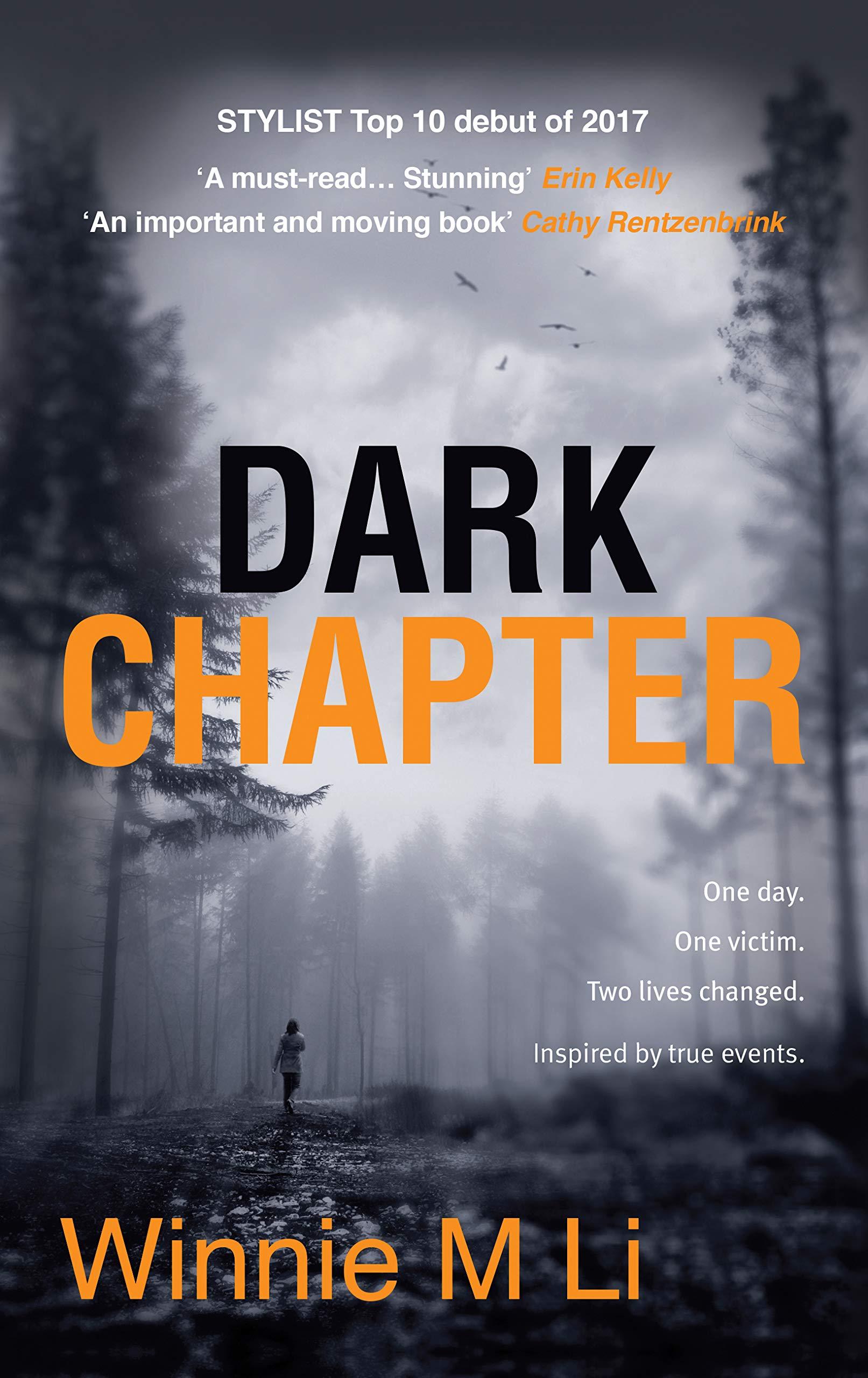 Dark Chapter Amazon Winnie M Li Books